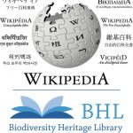Wikipedia and BHL Logos