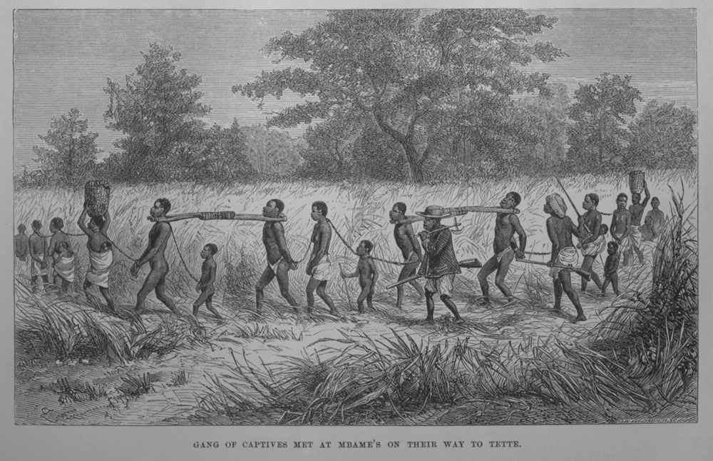 a history of african slave trade in america Once in the united states, enslaved africans were sold at auctions across the  country, from the rice plantations of  this did not fully prevent illegal slave  trading to the united states, which persisted until the american civil war  us  history.