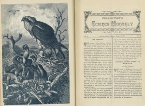 "The ""Collector's Science Monthly"" contained impressive illustrations of nature."