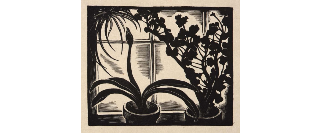 Window Plants, wood engraving by Howard Cook, 1931 (Smithsonian American Art Museums, no. 1980.122.142)