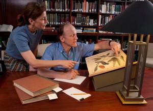 Cullman Library stock photos