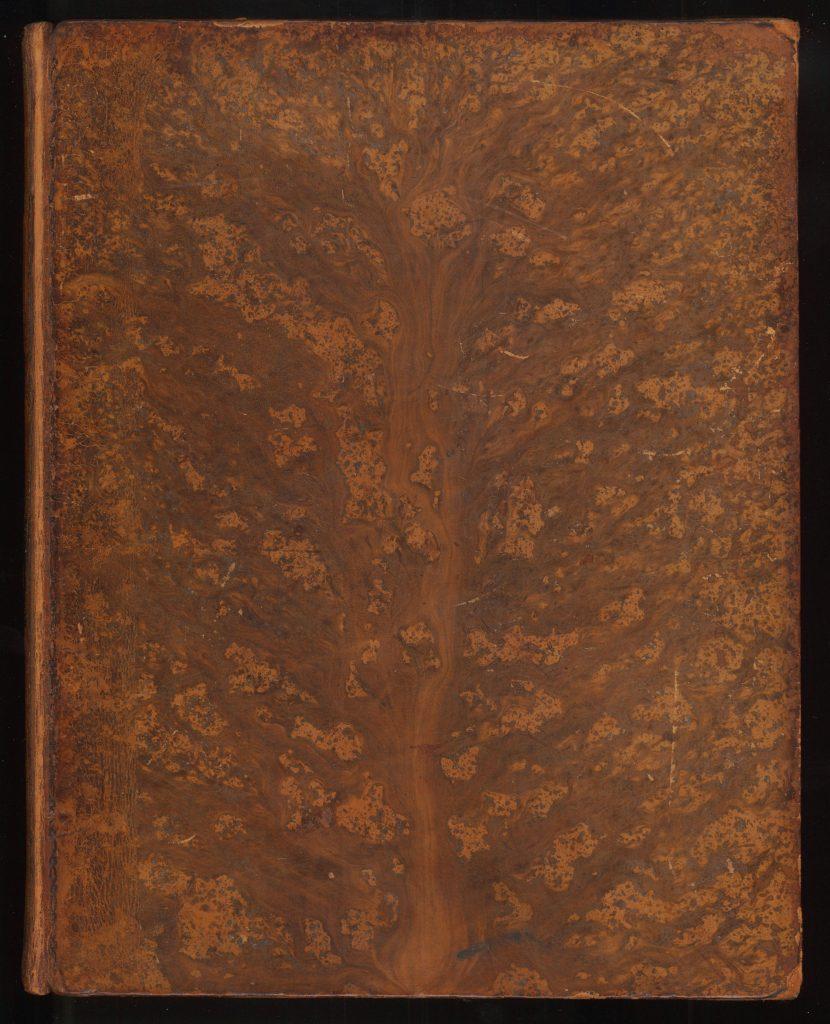 A tree calf binding for M. Voiron, Histoire de l'astronomie, depuis 1781 jusqu'à 1811 (Paris, 1810)