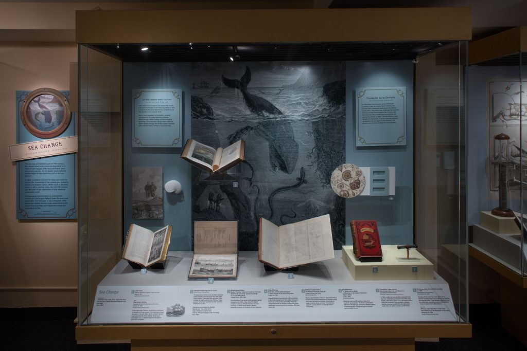 Fantastic Worlds exhibition case view of Sea Change section, photo by Hugh Talman 2015