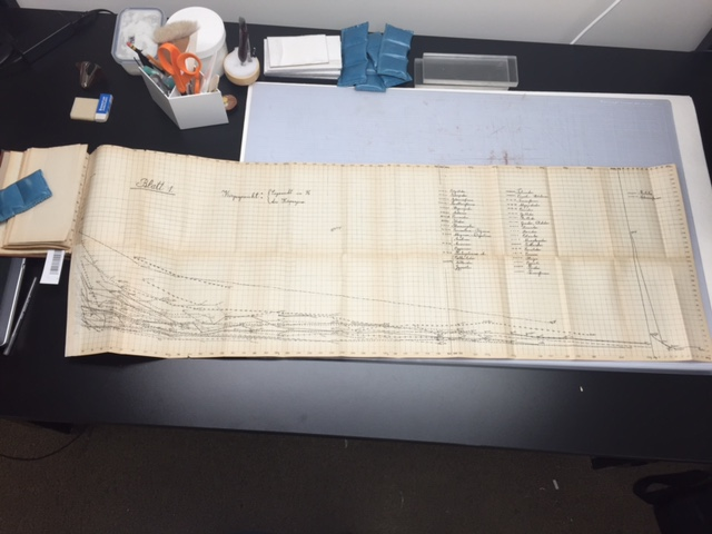 A nearly four foot long foldout!