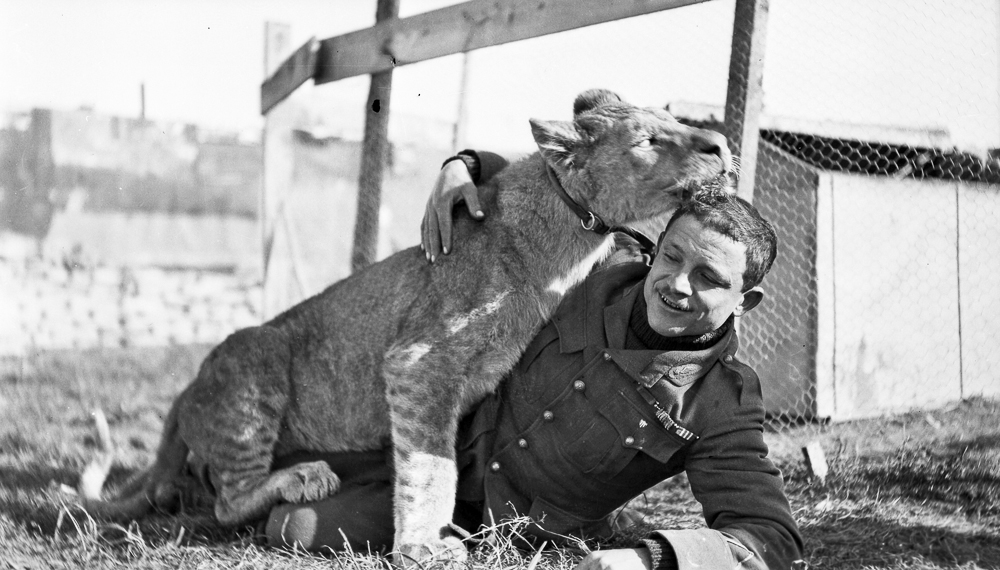 "Informal photograph of Gervais Raoul Lufbery and the Lafayette Escadrille's mascot ""Whiskey"" wrestling on the ground. Chaudun, July 1917."