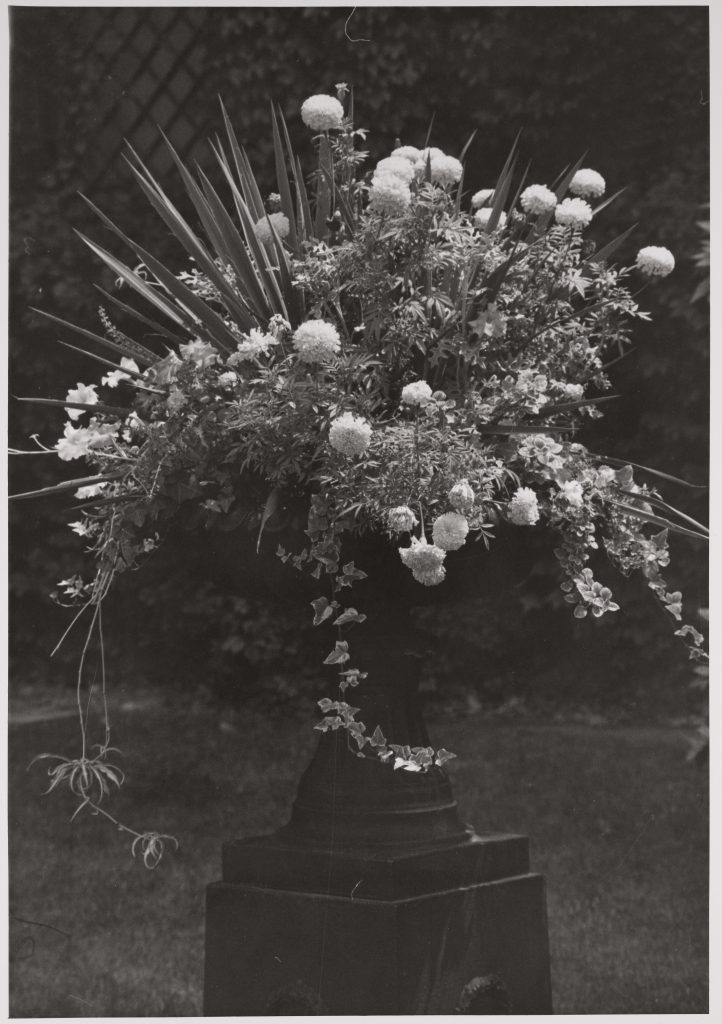 Black and white photograph of floral arrangement in urn.