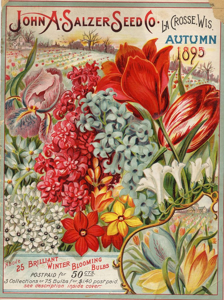 Front cover of late 19th century seed catalog featuring several types of colorful flowers.