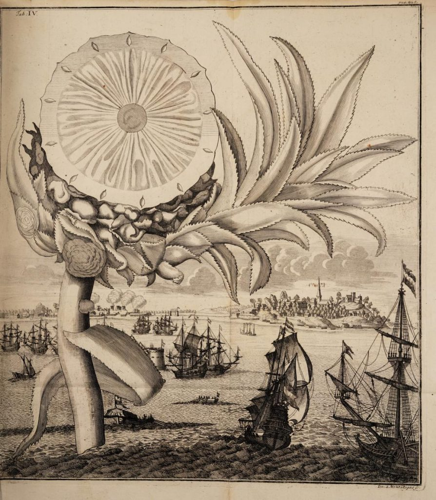 Black and white engraved illustration of cross section of pineapple with ships and water in background.