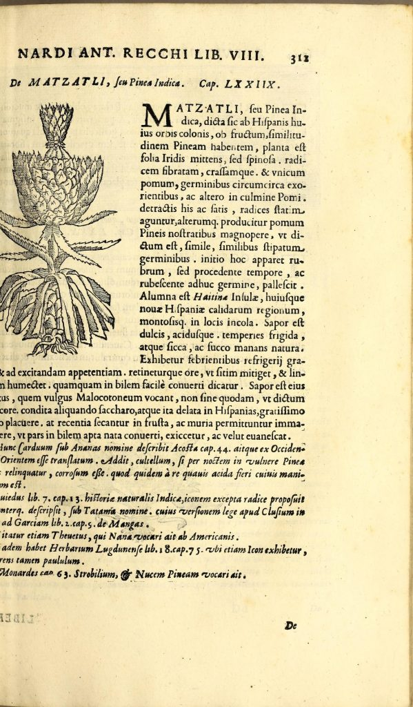 17th century natural history text with black and white wood cut illustration of pineapple in top left.