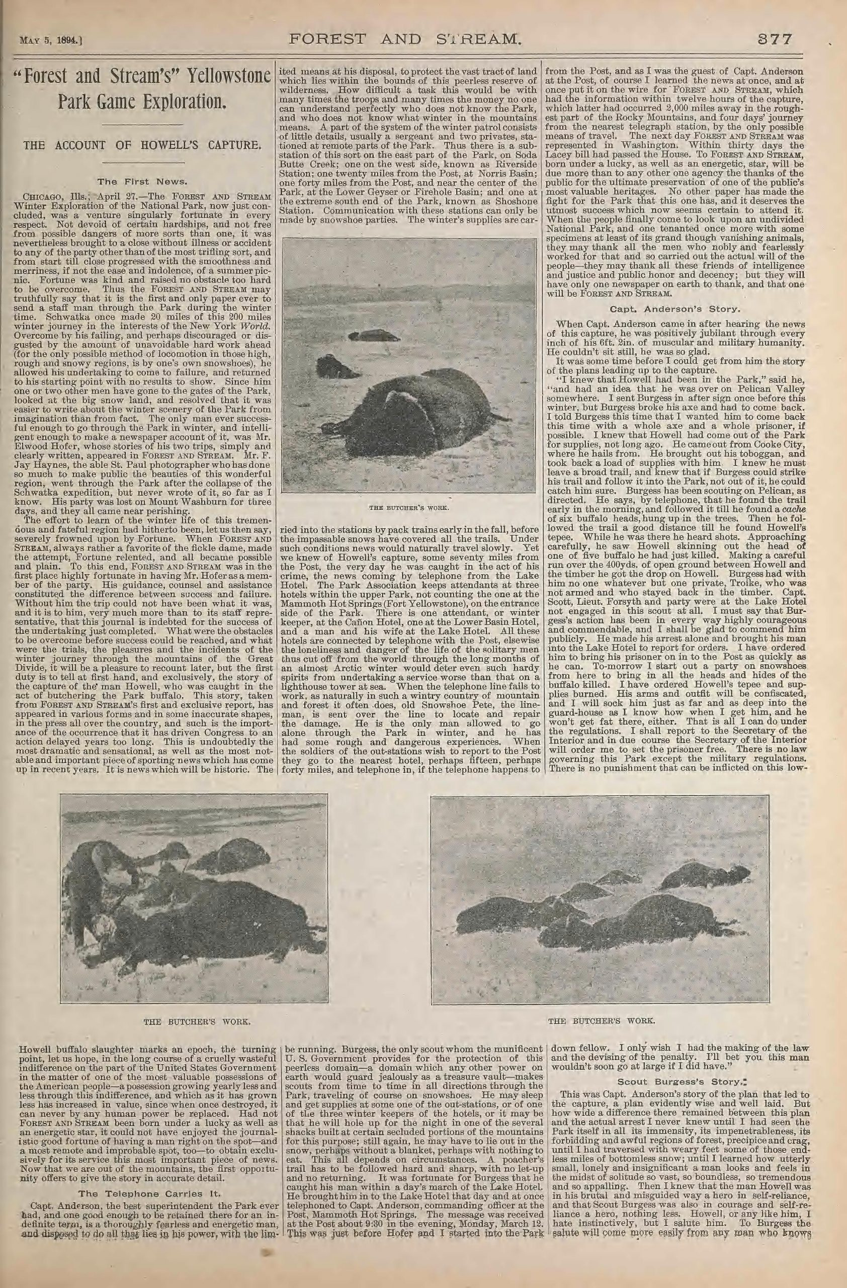 Article from Forrest and Stream with photographs of slain bison.